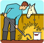 cleaning stables